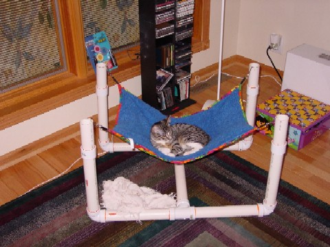 The cat critter hammock chaotic glass by mike aurelius for Pvc cat bed